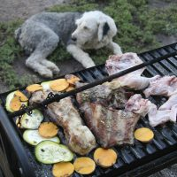 Barbecue with dog