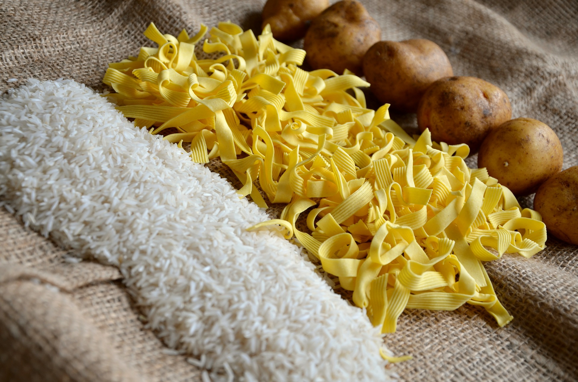 Carb Confusion: Part 2 - Measuring and Comparing Carbohydrate in Pet Foods