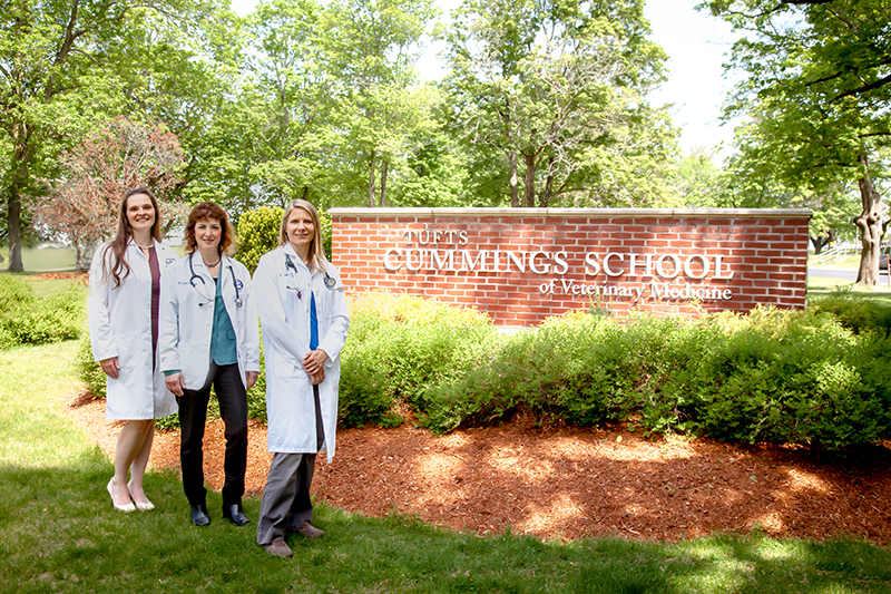 Clinical Nutrition Service team at Cummings School