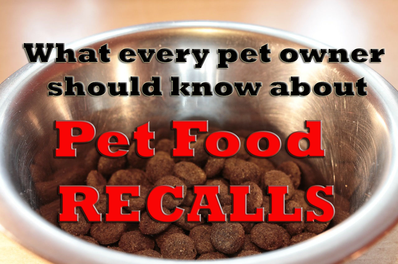 The Reality of Pet Food Recalls