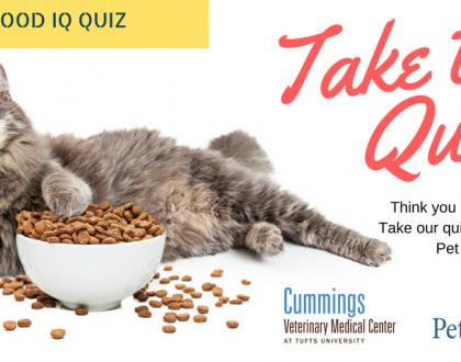Take the Pet Food IQ Quiz