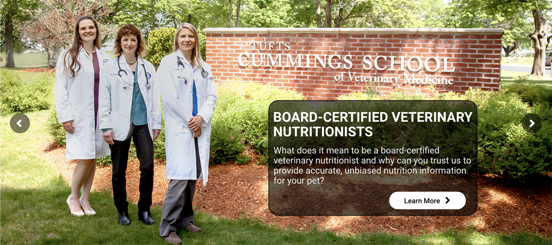 Photo of veterinary nutritionists at Cummings School